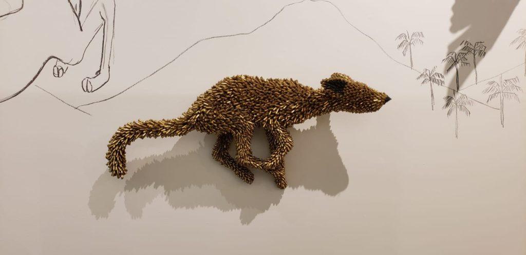 Rodent Animalia